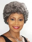 Wavy Short Capless Silver Gray Wig