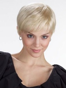Short Classic Lace Front Monofilament Synthetic Wig