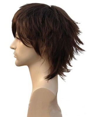 Human Hair Straight Attractive Capless Wig - Image 2